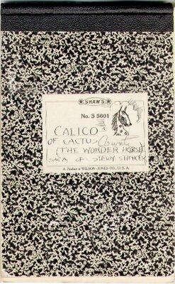Burton's Sketchbook for Calico the Wonder Horse